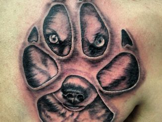 Husky Paw Print