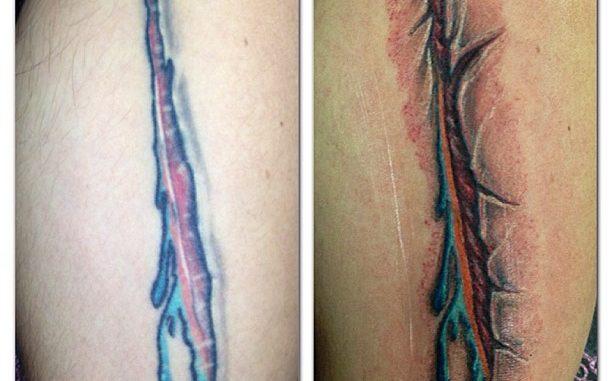 Dolphins skin rip repair