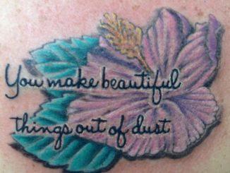 Hibiscus quote