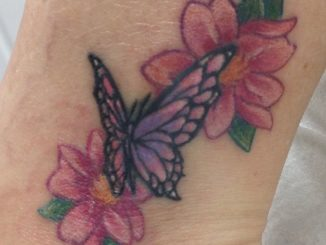 Tiny butterfly and cherry blossoms