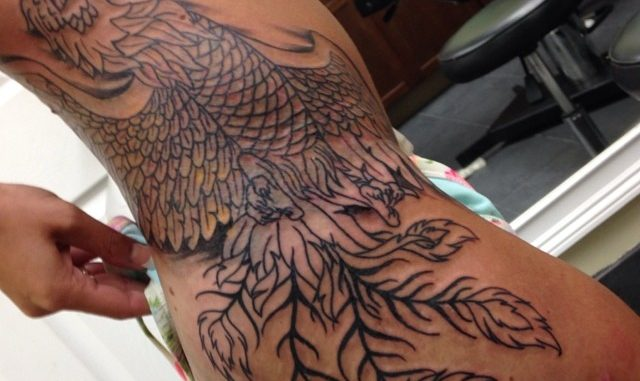 First session on Phoenix coverup