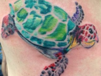 Watercolor turtle
