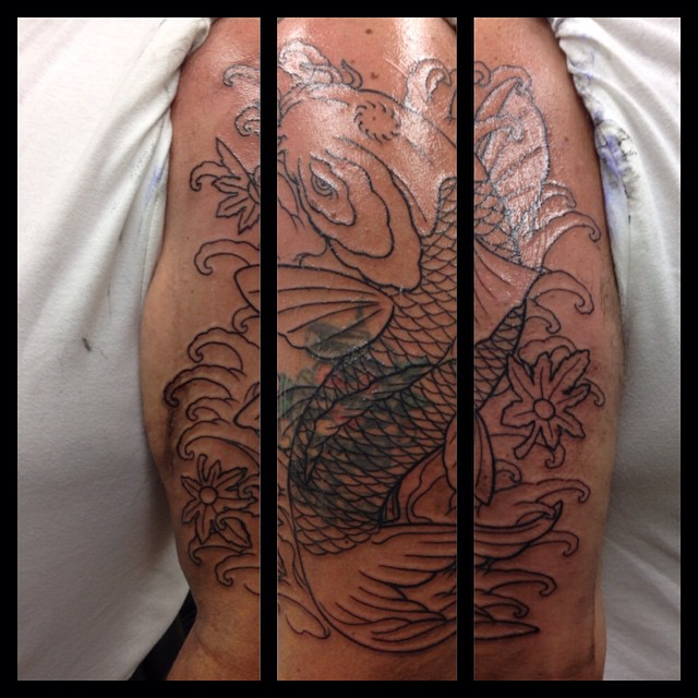 First session on Koi coverup
